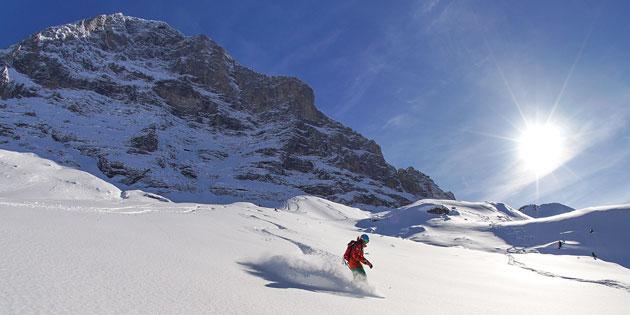 Schweizer-Skischule-Scheidegg-Snowboard.jpg